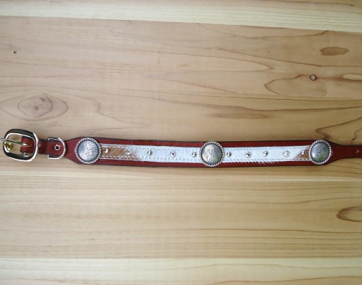 "1 1/4"" hair on dog collar with brown and white hide and rope edge conchos"
