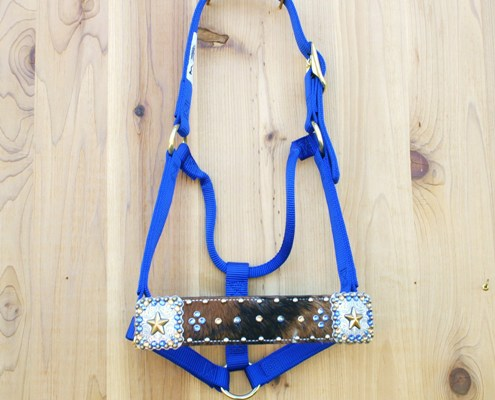 "2"" Tri Color straight nose blue halter with square gold star conchos and Sapphire and Lt Colorado Swarovski rhinestones"